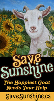 Save Sunshine