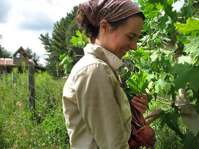 Sherry harvesting beets for a canning workshop